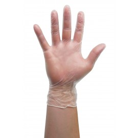 Large Vinyl Gloves - Latex Free - Clear - Powder Free - Pack of 100