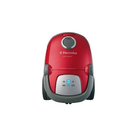 Electrolux Power Team Canister Vacuum