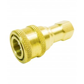 BRASS COUPLER BH1-60 (F) FOR A20