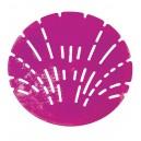 Urinal Screen - Lavender Scent - Big D 629