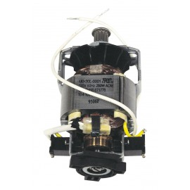 COMPLETE MOTOR 120 V - WESSEL WERK PN360