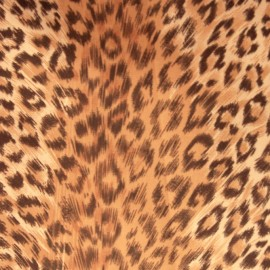 Cover for 35' (10 m) Hose of Central Vacuum Cleaner - Leopard - Pad-A-Vac